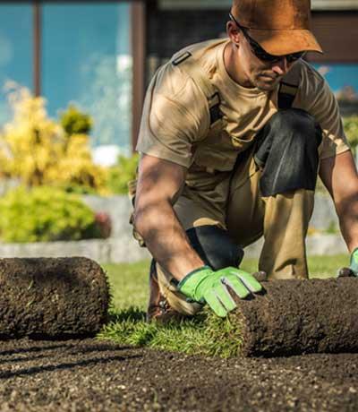 κατασκευή κήπων